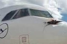 Airbus invade la Serra