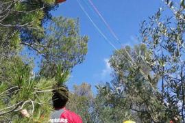 Rescatado en Bunyola un parapentista que se había quedado enganchado en un árbol
