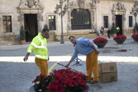 Los jardineros de Palma irán a la huelga