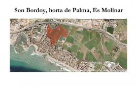 GOB lamenta que se ha destrozado Son Bordoi del Molinar para solucionar el acceso a la vivienda