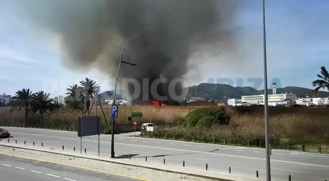 Un incendio devora ses Feixes des Prat de Vila