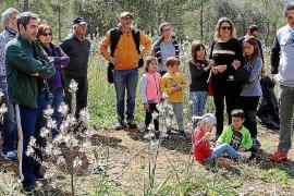 Naturaleza, calma y patrimonio, tres rutas para vivir el municipio de Lloret