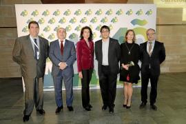 Carrefour, 40 años al servicio de más de 150 millones de clientes en Mallorca