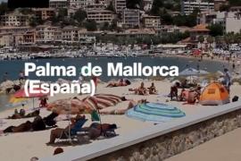 Espaldarazo en las redes a la prohibición del alquiler turístico en Palma