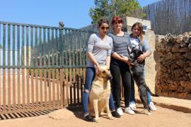 El Seprona investiga otra muerte por envenenamiento de dos perros en Ariany