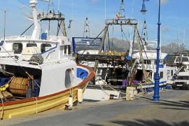 Pescadores de Mallorca consiguen poder llevar a turistas mientras faenan