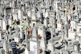 La Funeraria de Palma prevé recuperar más de 700 unidades de enterramiento
