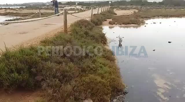300 metros de la costa de s'Estany des Peix se ven afectados por un vertido de gasoil
