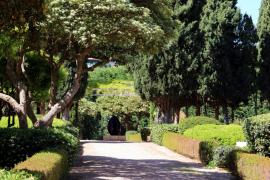 A partir de este martes ya se pueden visitar los jardines del Palacio de Marivent