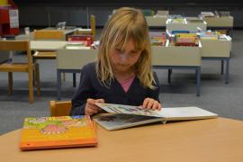 El Gobierno impulsa que los colegios dediquen una hora diaria a la lectura