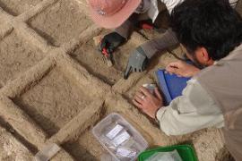Un equipo español halla un jardín funerario de 4.000 años de antigüedad en Luxor