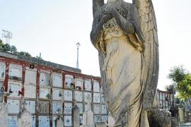Cort da a conocer el inventario patrimonial del Cementerio de Palma