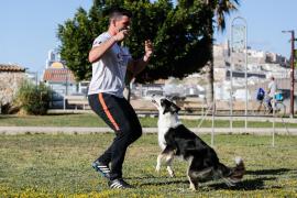 La perra Super representará a España en el Mundial de Agility (Fotos: Arguiñe Escandón)
