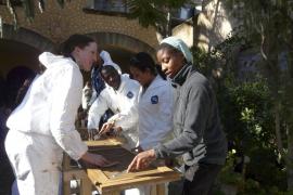 25 marinos dedican un día a mejorar el Juníper Serra de Petra
