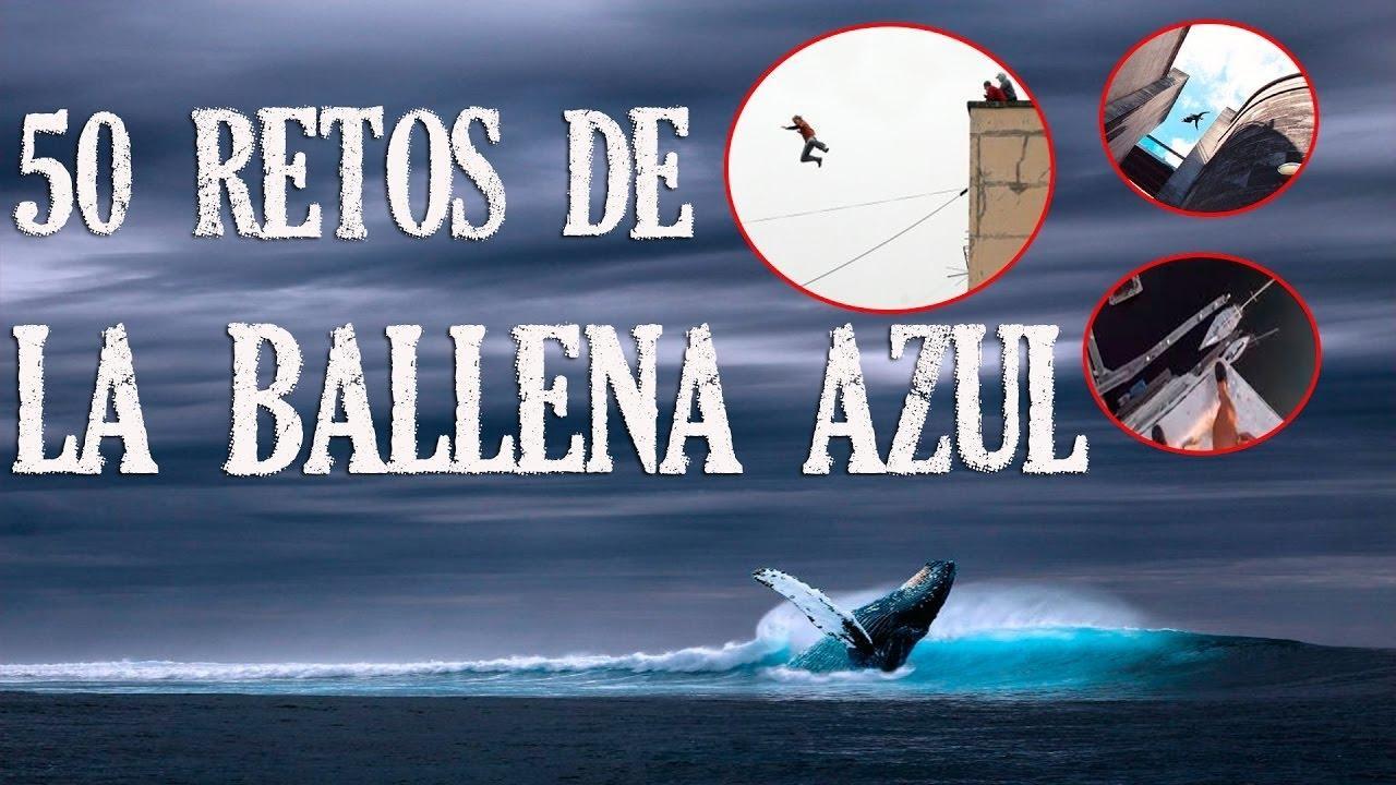 Orientadores del Govern trabajan con la menor víctima del reto de 'la Ballena Azul'