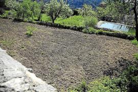 La propiedad del Hort de la Cartoixa da un año al Ajuntament de Valldemossa para pagar