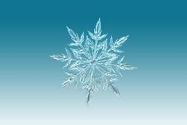 La ciencia demuestra por qué los copos de nieve son como son