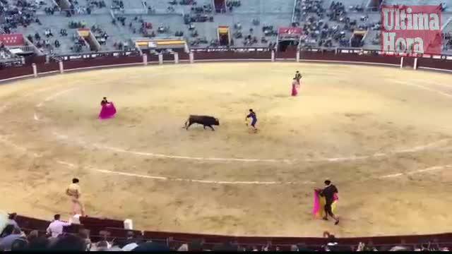 El joven torero mallorquín, Alfonso Gómez, debuta en Las Ventas