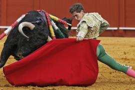 El Govern espera que la proposición de ley sobre los toros respete la legalidad