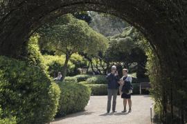 Las visitas a los jardines de Marivent caen un 35 % en la segunda semana