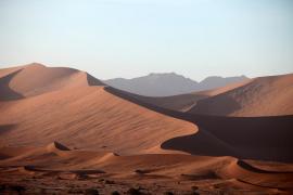 La arena transportada desde el Sáhara no es para regenerar playas