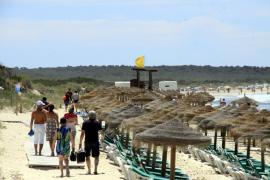 El GOB denuncia carencias graves en la licitación de hamacas y sombrillas en Es Trenc