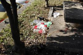 C's censura «la guerra abierta» entre MÉS y Podemos que hace que los parques tengan un estado de «suciedad lamentable»