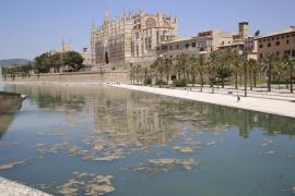 Mala imagen por la proliferación de algas en el Parc de la Mar por el calor