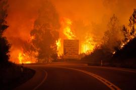 Al menos 62 muertos por un incendio en el centro de Portugal