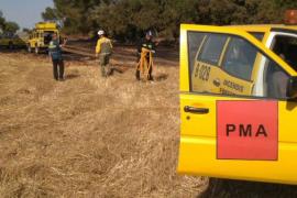Bomberos y medios del Ibanat extinguen un incendio agrícola en Campos