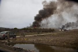 Un incendio con dos frentes penetra en el parque natural de s'Albufera