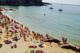 Evacuan las aguas de la playa de Cala Major por la presencia de un tiburón