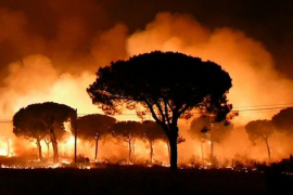 Más de 260 efectivos por tierra y 20 por aire trabajan en el fuego Moguer, que ha obligado a evacuar a de 2.000 personas