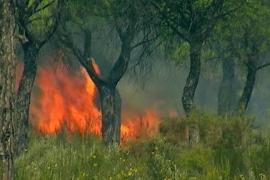 Otros cien desalojados en Mazagón por la cercanía del incendio de Moguer