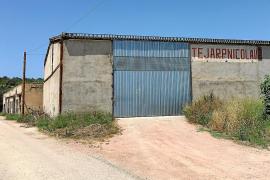 Miquel Barceló ultima la compra de otro tejar de Vilafranca para sus creaciones