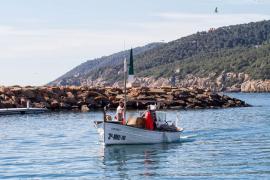 Decomisados 180 kilos de pescado ilegal en la costa de Ibiza