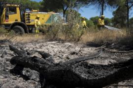 El fuego en el entorno de Doñana afecta a 8.486 hectáreas
