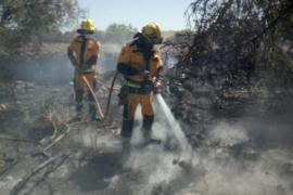 Un incendio quema 1,5 hectárea de superficie agrícola y forestal en es Rafal Nou