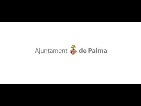 En directo, el pleno del cambio de alcalde en el Ayuntamiento de Palma