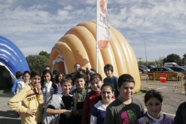 Los escolares de Formentera descubren los secretos de los ecosistemas
