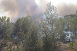 Cala Saona vuelve a ser pasto de las llamas por un incendio que obliga a desalojar 7 casas