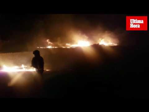 Incendio agrícola en el Port d'Andratx