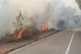 Cala Saona: treinta hectáreas quemadas en menos de dos meses