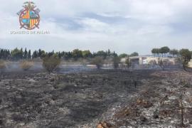 Un incendio quema una hectárea de rastrojos junto al hipódromo de Son Pardo
