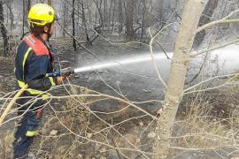 La mitad del territorio quemado en Balears este año ha afectado a Formentera