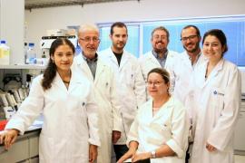 La UIB descubre el único inhibidor que evita la litiasis úrica, la teobromina