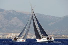 La Copa del Rey Mapfre de vela batirá este año en aguas de Palma todos sus registros