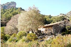 El Ibanat empieza a rehabilitar la finca ses Figueroles para convertirla en un refugio de montaña