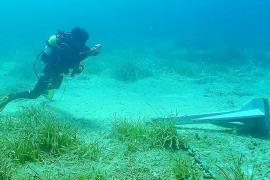 Medi Ambient detecta 267 embarcaciones fondeadas sobre praderas de posidonia