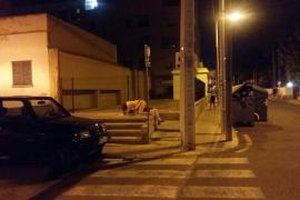 Sexo en plena calle